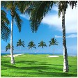 The Big Island Hawaii Golf Packages, Courses, Tee Times