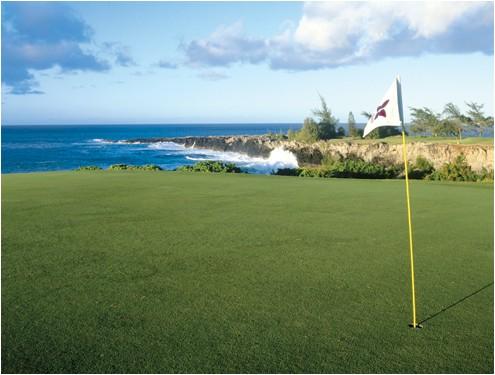 Kapalua Bay Golf Course Hawaii Golf